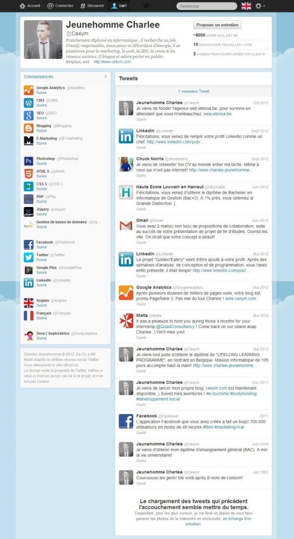 CV Page Web